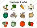 veg&salad